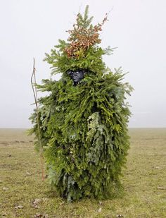 For two years, French photographer Charles Fréger has been travelling throughout 19 European countries and trying to capture the spirit of what he calls tribal Europe in his Wilder Mann series. - TreeMan
