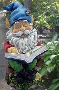 what would a gnome read about??