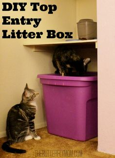 Tired of kitty litter getting all over the floor? Tired of the dog getting into the kitty litter box? Why spend big $$$ on a top entry litter when you can make your own in no time at all? Super easy and super inexpensive #DIY project.