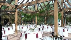 Shannon + Phil's reception in the Glass House, August 2015