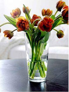 A Simple, Versatile Vase