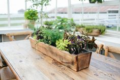 This wooden trough is a great vessel for plantingif you're looking to try your hand at growingherbs. It also makes an excellent farm tablecenterpiece, or cra