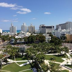 Things to do in Miami:  Miami Beach Botanical Gardens tour  A fabulous way to get to know the city and to photograph  This is from the garden on the New World Symphony Roof top!  A wonderful view!