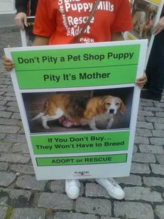 Don't pity a pet shop puppy. Pity its mother. Rescue Dogs, Animal Rescue, Dog Died, Foster Mom, Puppy Mills, Pet Life, Animal Cruelty, Animal Quotes, Animal Welfare