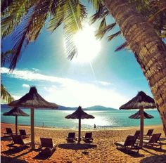 Hamilton Island Honeymoon