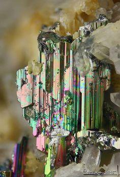 Krennerite, AuTe2, Sacaramb, Romania. Fov 1.2 mm. Photostone Ásványfotós