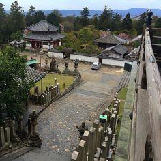 Вид с павильона #Нигацудо храма #Тодайдзи в #Нара #мидокоро  #Япония