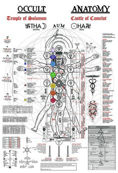 Human Anatomy related to Temple of Solomon (Occult) and Castle of Camelot (Anatomy)