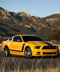 'Meet the Boss!' Ford Mustang Boss 302. Get your hands on one of these here… http://www.ebay.com/itm/Ford-Mustang-Boss-302-Muscle-Car-Yellow-13x19-POSTER-/291119280360?pt=Art_Posters&hash=item43c80fb0e8?roken2=ta.p3hwzkq71.bdream-cars #MuscleCarMonday #Mustang