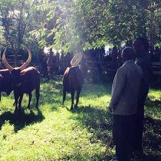 Perezida wa Repubulika y'u Rwanda, Paul Kagame yakiriye uwa Tanzania, John Pombe Magufuli mu rugo