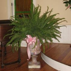 Google Image Result for http://www.wedding-flowers-and-reception-ideas.com/images/altar-flowers-for-a-wedding02.jpg
