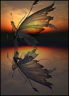 reflect | Flickr - Photo Sharing!