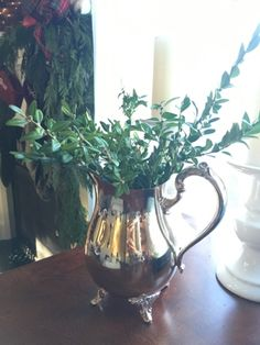 Boxwood Clippings, Home Decorations, Silver Pitcher, Christmas Decorations