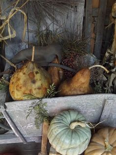 Pumpkins & Gourds on porch 2013