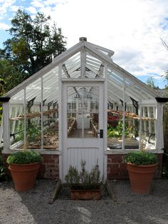 We love, love, LOVE old glasshouses at Culti-Vate. These glasshouses are at Hampton Court Castle in Herefordshire, there are three of these beautiful old glasshouses in the garden, all still in use…