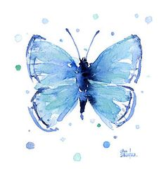 Butterflies Print featuring the painting Blue Watercolor Butterfly by Olga Shvartsur