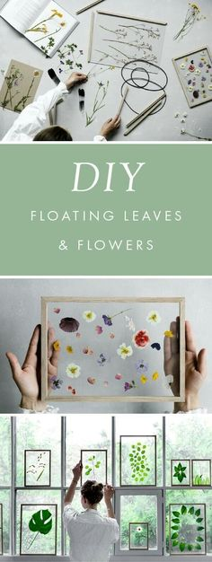 DIY Floating Frame-Leaves and Flowers