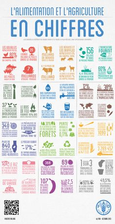 L'alimentation et l'agriculture en chiffres #agriculture #world #infography #food