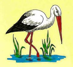 Spring Activities, Activities For Kids, Drawing For Kids, Art For Kids, Watercolor Bird, Illustrations, Spring Crafts, Box Art, Pet Birds