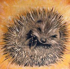 Beautiful wildie hedgehog art 插 画 hedgehog art, hedgehog dra Hedgehog Art, Hedgehog Tattoo, Hedgehog Drawing, Hedgehog Illustration, Sleeping Animals, Cute Reptiles, Cute Animal Drawings, Woodland Creatures, Wildlife Art