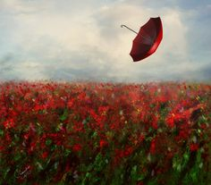 Not a Care in the World by Phatpuppyart - Red umbrella Umbrella Art, Under My Umbrella, Blowin' In The Wind, Umbrellas Parasols, Windy Day, Rainy Days, Red Art, Shades Of Red, Red Flowers