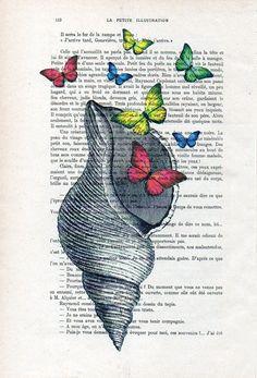 Mar cáscara mariposas impresión caprichosa por NotMuchToSay en Etsy