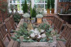 Fru Pedersens fantastiske julehage! Decoration, Evergreen, Seasons, Plants, Holidays, Autumn, Christmas, Decor, Holidays Events
