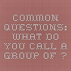 Common Questions: What Do You Call a Group of. Dial M For Murder, Research Centre, You Call, Health And Safety, Rhinos, Group, This Or That Questions, Animal, Rhinoceros