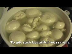 Mikey Sklar explains how he makes mozzarella cheese using only raw milk and 1/2 a rennet tablet. This cheese melts and is great for pizza, nachos, and fresh ...