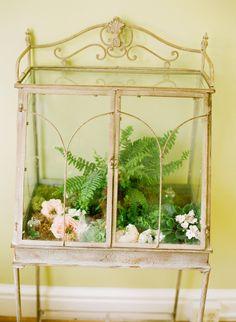 antique terrarium- I would love to do this for my snakes Snake Terrarium, Garden Terrarium, Succulent Terrarium, Succulents Garden, Reptile Room, Paludarium, Vivarium, Bird Cages, Cactus Flower