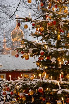 Tivoli Gardens, Copenhagen, Denmark.  I personally love the European style trees with more open space to allow for candels and hanging ornaments. Let's not forget how much chicer it is to put your tree up a few days before Christmas, or better yet on Chr. Eve, than WEEKS PRIOR. So tacky.