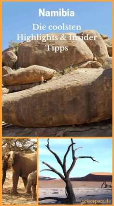 Namibia Insider Tips – our highlights for Namibia at a glance. These Namibia tips are also great for families. Africa Destinations, Top Travel Destinations, Places To Travel, Peru Travel, Africa Travel, Koh Lanta Thailand, Solo Travel Tips, Vacation Trips, Adventure Travel