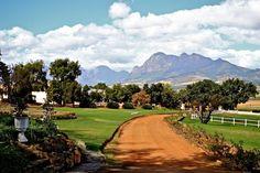 Wine Farm Western Cape South Africa