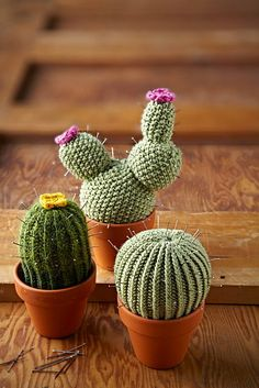 Free knitting pattern for Cactus Pincushions -  Lucille Randall designed these three miniature cacti that make perfect pin cushions. Add a few crochet or knit blossoms and put in tiny pots and you have perfect gifts.
