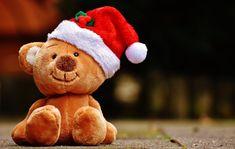 Tänä vuonna Vain elämää -tähdet ovat lähteneet mukaan yhden joulukeräyksen lähettiläiksi. Suomessa tuhannet lapset sekä nuoret elävät vähävaraisissa perheissä ja koronakriisin aiheuttama poikkeuksellinen vuosi on vain lisännyt taloudellisia vaikeuksia monissa perheissä. Pelastakaa Lapset ry:n mukaan yhä Christmas Teddy Bear, Christmas Animals, Merry Christmas, Funny Christmas, Christmas Shopping, Christmas Cards, Big Teddy Bear, Christmas Invitations, Create Your Own Invitations