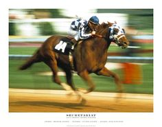 Secretariat (I used to own one of his grandsons)