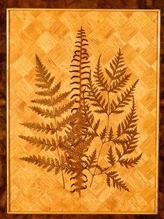 detail of marquetry ferns, inlaid on the interior of the central cabinet door