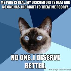 Chronic Illness Cat | My pain is real. My discomfort is real and no one has the right to treat me poorly.