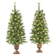 3.5' Pre-Lit Artificial Urn Trees, Cashmere with Clear Lights at Big Lots.