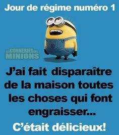 Minions, French Class, Literature, Funny Quotes, Jokes, Lol, Messages, Education, Shigeru
