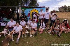 Everything Beagle committee members & volunteers !!