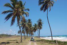 Passeio de buggy pela praia do Paiva, em Cabo de Santo Agostinho, Pernambuco, Brasil