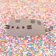Pusheen and sprinkles, my life is complete