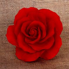 Extra Large Roses Jardín - Red | CaljavaOnline