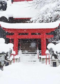 Winter Comes to the Shrine, Hachimantai, Iwate, Japan. Chreey blossems are pretty, but winter in japan is so amazingly nice! Japanese Culture, Japanese Art, Japanese Things, Japanese Gardens, Winter In Japan, Snow Japan, Japan Japan, Beautiful World, Beautiful Places