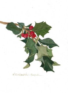 Red Holly watercolor illustration by wandazuchowskischick - Etsy