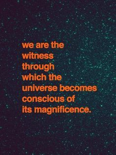 We are the witness through which the universe becomes conscious of its magnificence