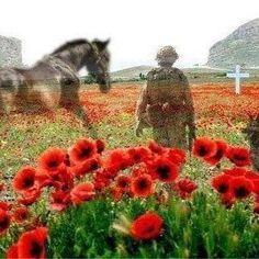 Remembrance Sunday Armistice