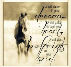 Even though i don't own the horse i ride i can always think about stuff way better when my ride really listens to what i have to say and knows what i'm going through regardless of if he is a horse