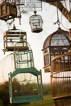 bird cages!!  I love bird cages!! I never thought of using them outside.